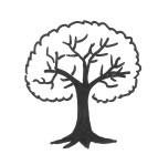 arbre retallat